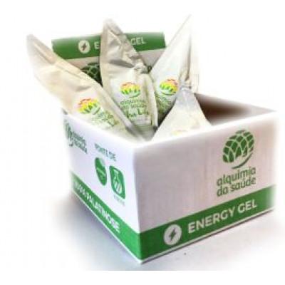 Palatinose Gel Box com 15 unidades Alquimia da Saúde